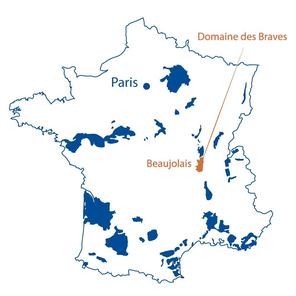 Domaine des Braves Beaujolais France North Berkeley Imports