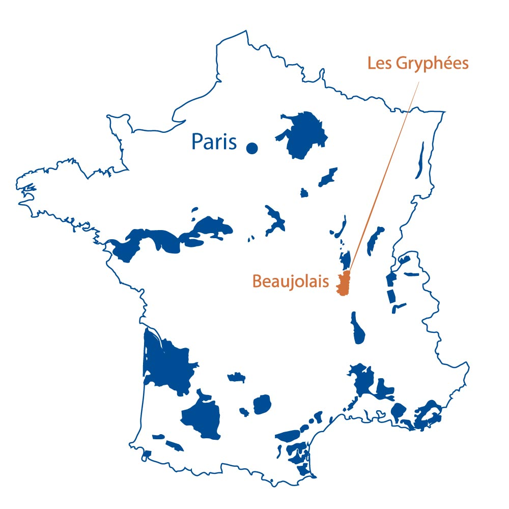 Domaine Les Gryphees Beaujolais France North Berkeley Imports