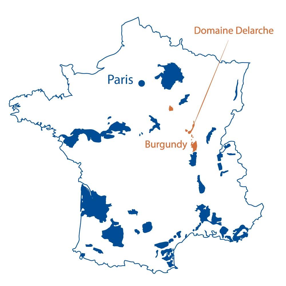 Domaine Marius Delarche Burgundy North Berkeley Imports